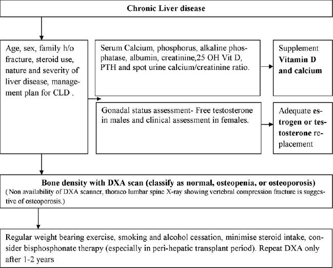 Chronic liver disease and skeletal health (hepatic